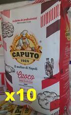 Farina Rossa Caputo Pizza Chef 10 Kg. pizze rosticceria dolci Fragrante elastica