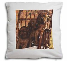 Irish Red Setter Puppy Dogs Soft Velvet Feel Cushion Cover With Inn, AD-RS53-CPW