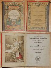 Franz Wiedemanns illustrierte Bibliothek für die Jugend Bunte Steinchen 1869 xx