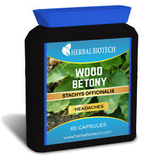 HerbalBioTech Wood Betony Stachys Officinalis 60 Capsules Headaches