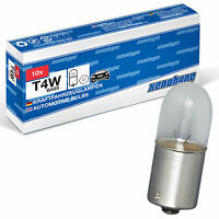 10x T4W XENOHYPE Premium BA9s 12 V 4 Watt Glassockellampe