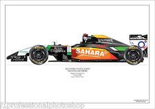 2014 Force India VJM07 Nico Hulkenberg art print A4 ltd ed./250-signed by artist