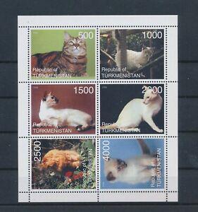 LO13639 Turkmenistan pets animals cats good sheet MNH