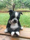"Boston Terrier Puppy Dog Sleepy Figurine Sitting Ornament Holds Self Up New 7"""