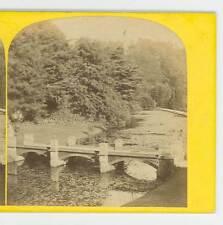 Wsa8243 Petschler 290 Alton Towers Bridge in the Gardens Staffordshire Uk D