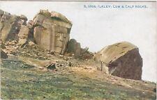Cow & Calf Rocks, ILKLEY, Yorkshire