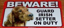 Ирландский сеттер