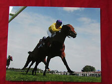 Sea the Stars  & Michael Kinane  HORSE Racing  Photo 2009