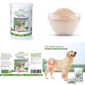 AniForte Teufelskralle Gelenk Aktiv Pulver 500 g für Hunde und Katzen Arthrose