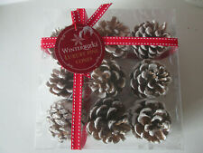 Box of 9 White Pine Cones