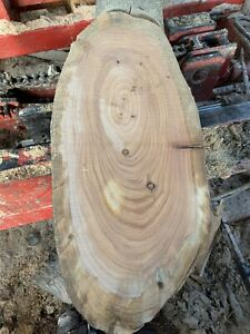 Macrocarpa wood (Monterey Cypress) Ovals Waney Table Top platter centrepiece