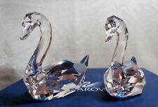 "SWAROVSKI CRYSTAL ""FLIRTING SWANS"" 837154 FEATHERED BEAUTIES NEW & MINT RETIRED"