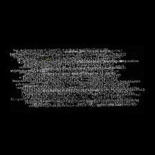 Ty Segall - Ty Rex [New Vinyl]