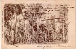 Paraguay - 1906 Palmar, San Bernardino used postcard
