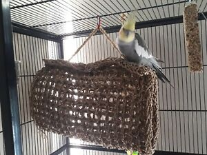 Braided Seagrass Mat 60 x 35cm Australia Wide Postage Bird Rabbit guinea Pig Hut