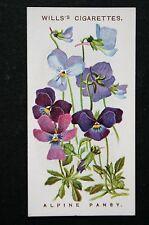 Alpine Pansy   Original 1913 Vintage Colour Card  VGC