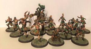 Rare : Blood bowl Wood Elf Team + Treeman Pro Painted