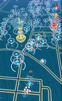 Pokemon Go 100 Random Catches + 100 Spins *SHINY CHANCE* (SEE DESCRIPTION)