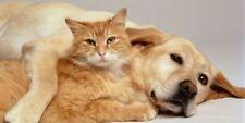 Natürliche Wurmkur ohne Chemie für Hunde und Katzen - 40 Tabletten