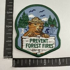 Smokey the Bear Vintage Retro United States Forest Service USFS Vel hooks Patch