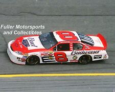 DALE EARNHARDT JR WINS 2004 DAYTONA 500 #8 BUD BORN ON DATE 8X10 PHOTO NASCAR