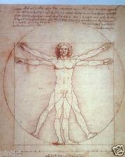 hombre de Vitruvio Leonardo Da Vinci 50x35 sobre MDF Bandeja cuadro