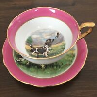 Special Windsor England Tea Cup & Saucer PINK Spaniel Dog Pheasant Grouse Hunt