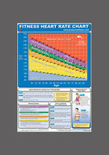 FITNESS HEART RATE CHART Cardio Fitness Professional Gym Wall Chart POSTER