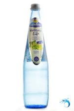 CHRISTINEN WELLNESS life Erfrischungsgetränk 6 Vitamine zugesetzt ~ 12 Flaschen