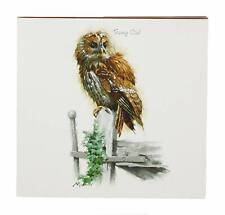 Macneil Birds Memo Pad (Tawny Owl)