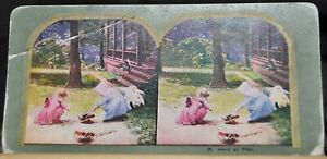 """Antique Stereograph Card - #25, """"Hard at Play""""- 1900's"""