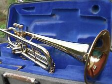 york senator trumpet