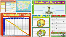 Multiplication, Fractions, Bones, States, Cells & Government Study Handouts