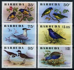 Barbuda Birds on Stamps 1976 MNH Terns Bananaquits Gallinule Killdeer 6v Set