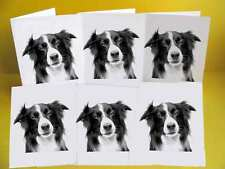 Border Collie Dog Notelets / Blank Cards pack of 6, Small A6 size