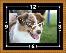 Australian cruzar Perro Reloj Presente Navidad Cumpleaños (personalizable)
