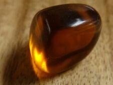 Obsidian, Golden Obsidian. St Helens Obsidian 71.71 ct.