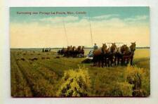 Manitoba Collectible Canadian Postcards