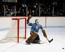 Les Binkley Pittsburgh Penguins 8x10 Photo