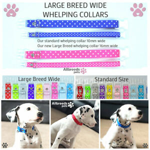 Allbreeds LARGE BREED WIDE Puppy I.D Whelping Collars, Adjustable Bands Breeding