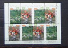 Slovenia 1996 Europa Famous Women Miniature Sheet MNH
