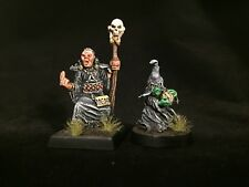 Painted Miniature Necromancer and Minion Sidekick Lot Reaper D&D Pathfinder