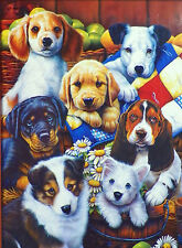 PUZZLE..NEWLAND....Country Bumpkins......1000pc...Sealed.
