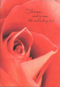 Red Rose Forever Is Not Long Enough I Love You Romance Hallmark Card