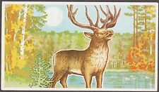 USSR 1977 Matchbox Label - Cat.365G  Wild animals - deer.