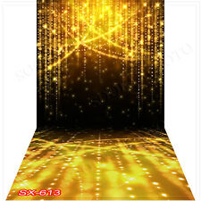Christmas10'x20'Computer/Digital Vinyl Scenic Photo Backdrop Background SX613B88