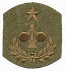 Wool WWI Army Engineer - Coast Artillery Patch