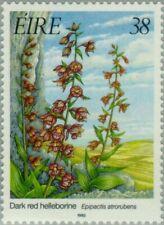 REPUBLIC of IRELAND - 1993 - Dark Red Helleborine - Epipactis atrorubens - #893