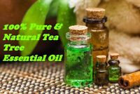Natural Tea Tree Essential Oil 5ml to 250ml Free Shipping