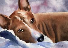 Basenji Dog Watercolor 8 x 10 Art Print Signed by Artist Djr